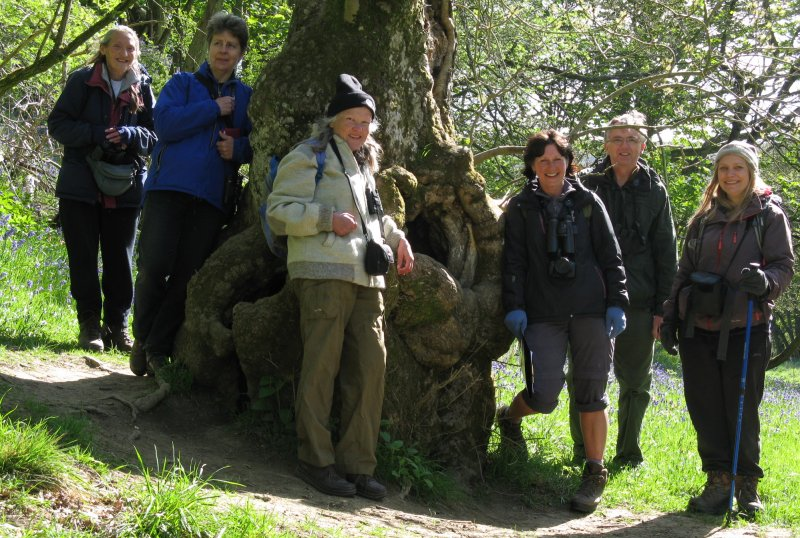 Ryedale Members at ancient ash
